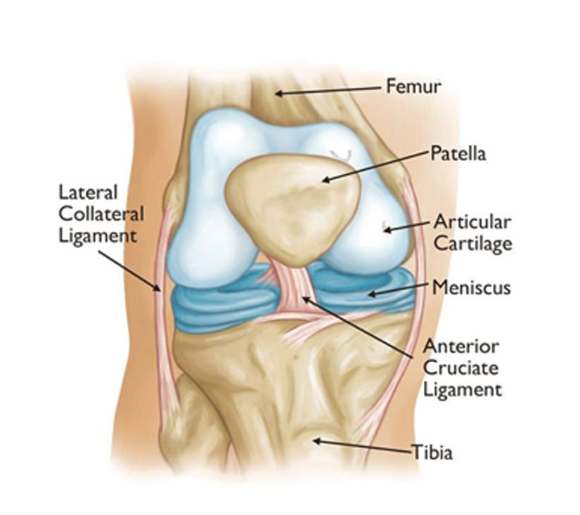 Alosh Orthopedics | Knee Osteoarthritis